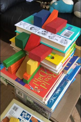 Student Jaydon S. created his Rube Goldberg machine using household materials like books and blocks.