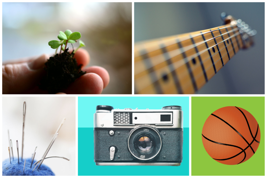 Hobbies+Enrich+Lives